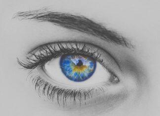 eye-3150089_640rzęsy