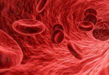 Grupa krwi a dieta